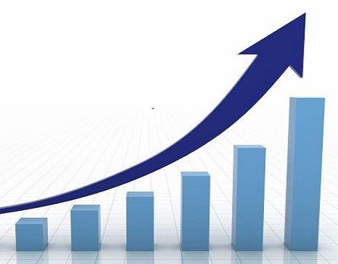 Leistungsbilanzen des Vereins